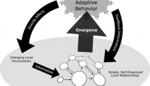 The Systems Approach to Governance Quandaries