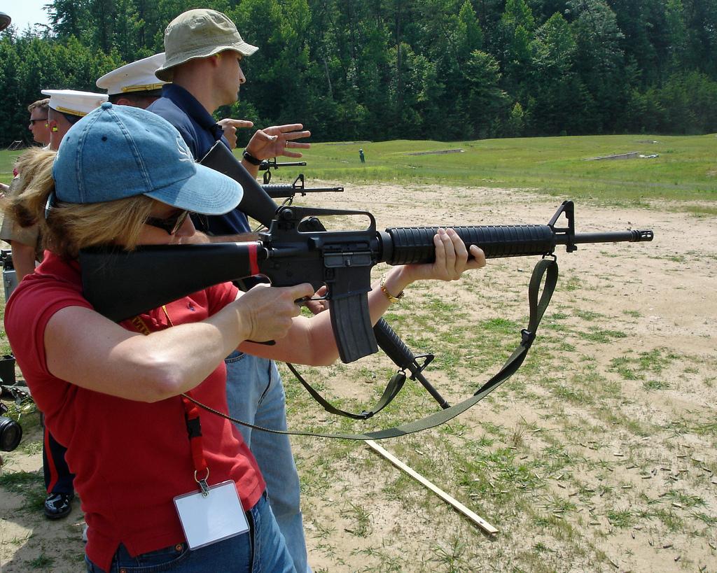 Reflections on Gun Control