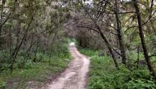 Stressed? Take a hike!