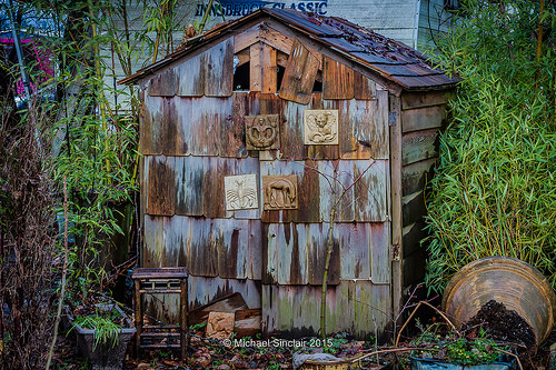 Canada shed photo