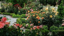 The Gift of Gardens