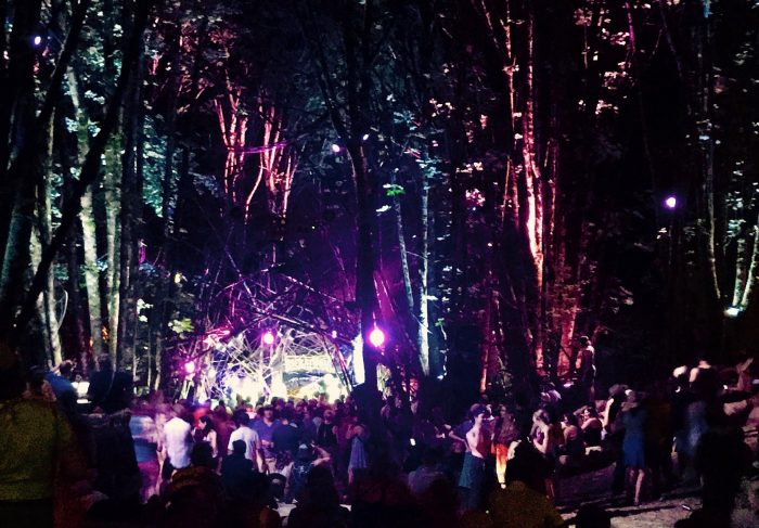 Wednesday! : Pickathon Edition