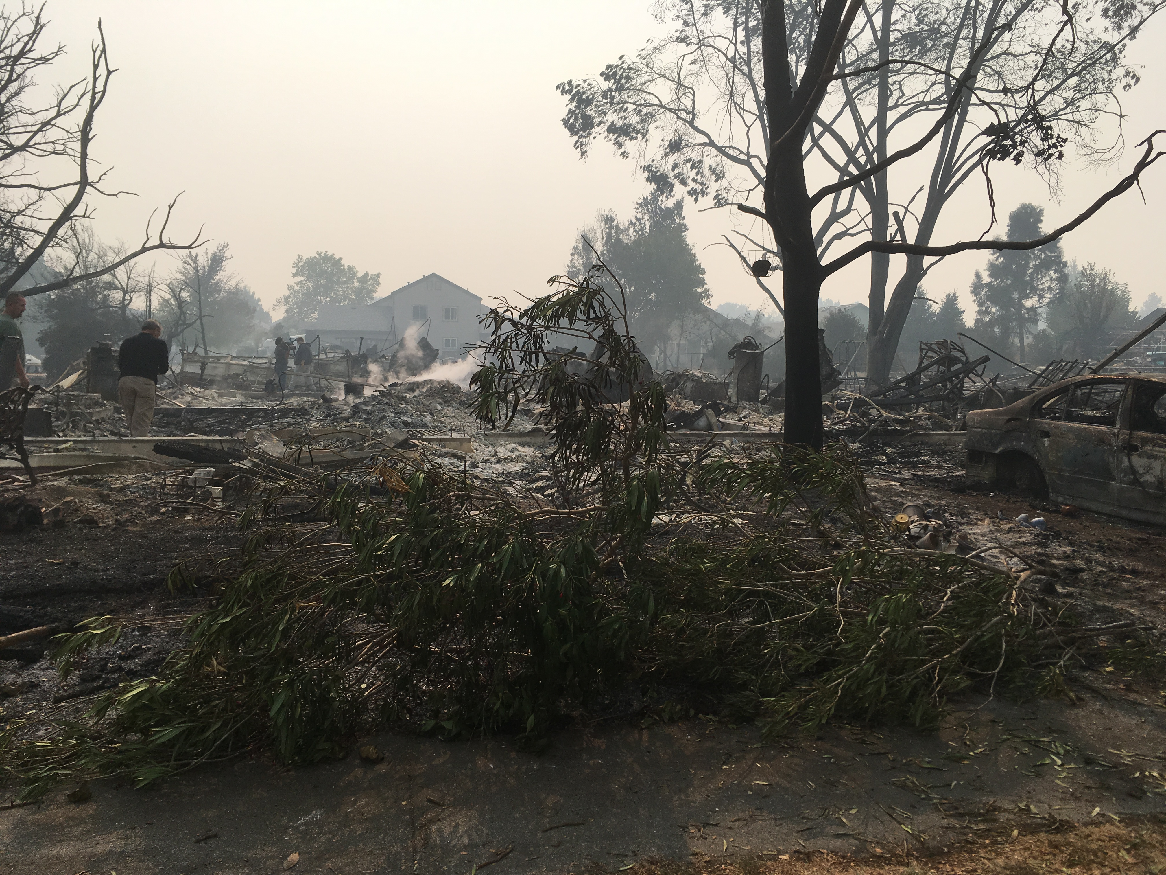 Santa Rosa After the Tubbs Fire