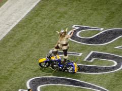 Minnesota Vikings photo