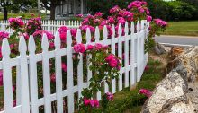 Linky Friday: Picket Fences
