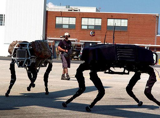 Robots: Viral Success, but Practical Challenges Remain