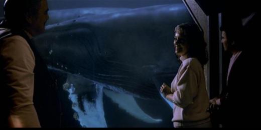 Mini-Throughput: The Hope of Humping Humpback Whales