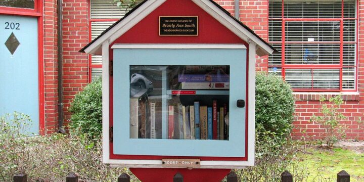 Walking Around Thoughts: Little Library Freedom Ain't Free